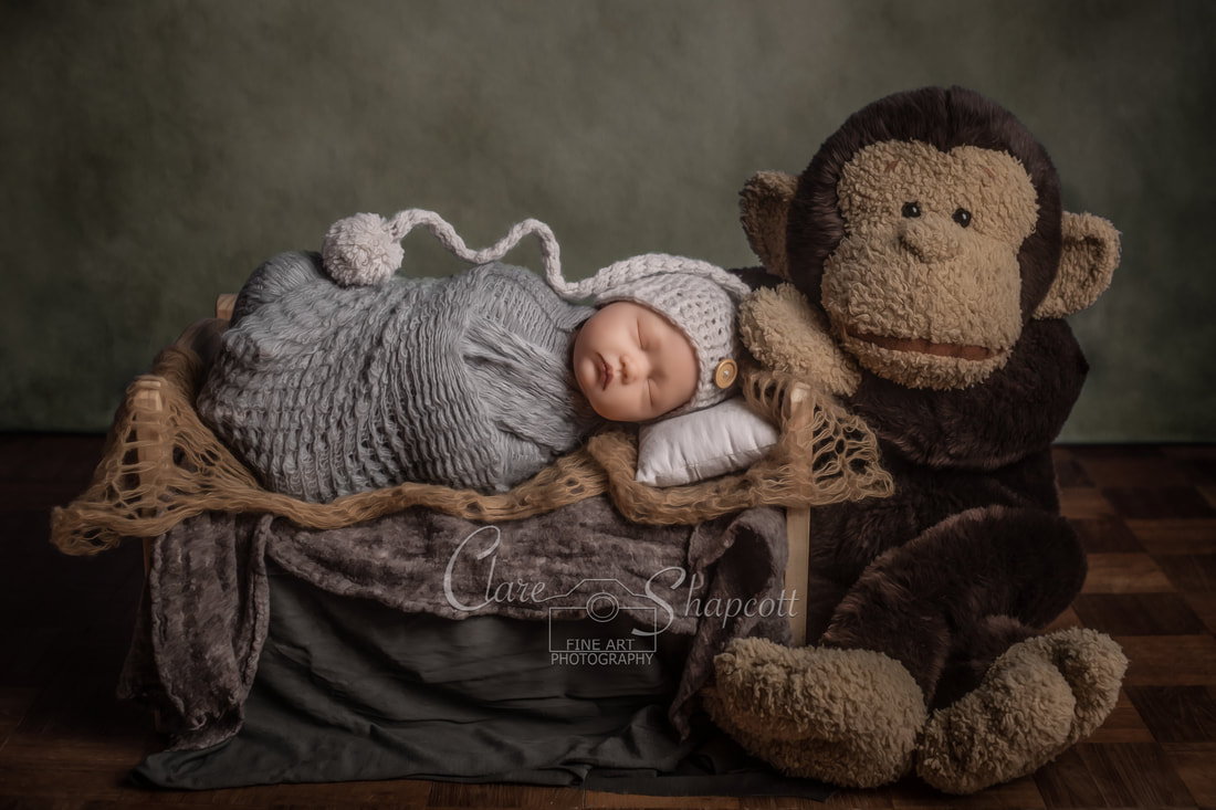 Published newborn photograph of baby wrapped in grey material lying in miniature bed next to large soft monkey.