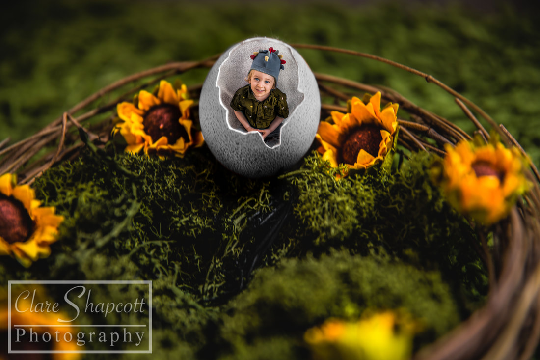 Picture of child inside egg with yellow flowers and grass